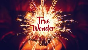 wonder-16-9